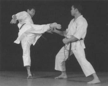 Mikio Yahara: unique mawashi geri technique
