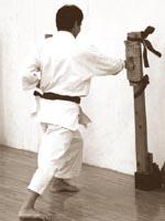 Сэнсэй Микио Яхара