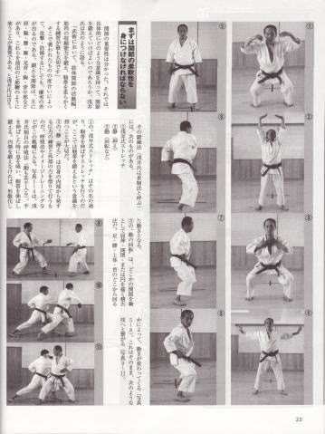 Tetsuhiko Asai, Japan Karate Shotokai