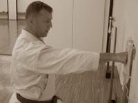 Александр Терехин тренируется в хонбу додзё KWF