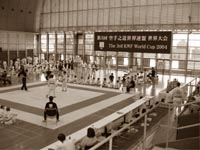 3-й Кубок Мира по каратэ KWF