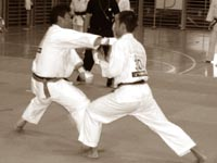 3-й Кубок Мира по каратэ KWF: кумитэ