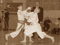 Соревнования по кумитэ