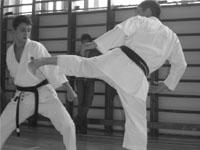 Норио Кавасаки: маваши гэри