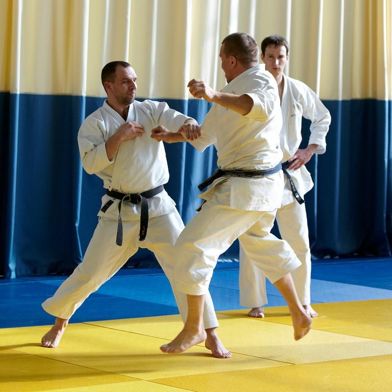 семинар по каратэ в Зеленограде