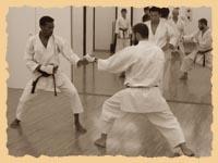 Тренировка в хонбу додзё KWF: Олег Бриленок и Абдул (Судан)