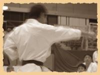 Гьяку дзуи в исполнении сэнсэя Микио Яхара