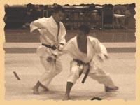Поединок Норио Кавасаки