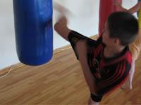 Маваси гэри на боксерском мешке
