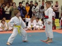 Соревнования по кихон иппон кумитэ